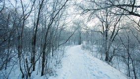 Steeg in sneeuwochtend stock videobeelden