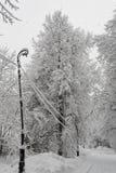 Steeg in sneeuwochtend stock afbeeldingen