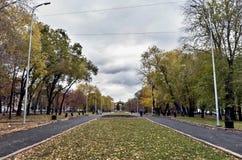 Steeg voor gangen met oude bomen, de herfst royalty-vrije stock fotografie