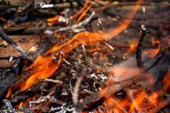 Steek de brand aan Macro van vuur, witte rook, hete, gloeiende steenkool en brand wordt geschoten die Royalty-vrije Stock Foto