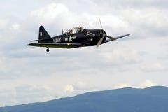 Steekproefvliegtuigen airshow Stock Foto's