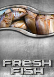 Steel Background with Fresh Fish. Steel background with frame and fresh fishes inside and metallic text Stock Images