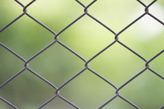 Steel barb. With green bokeh background Stock Photography
