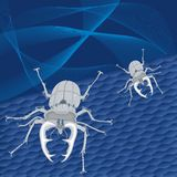 Steel beetles Royalty Free Stock Images