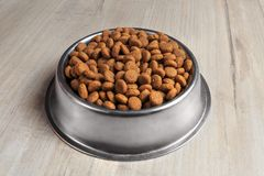 Bowl with dog food Royalty Free Stock Image
