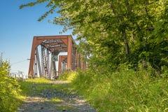 Steel bridge in the woods Royalty Free Stock Photo