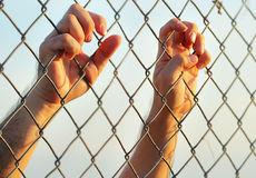 Steel cage Royalty Free Stock Photography