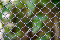 Steel cage. Iron grates remove animals fierce stock images