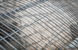 Steel cage. Metal texture Stock Photo