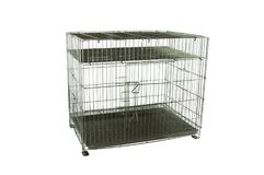 Steel cage for pets on isolated white Stock Image