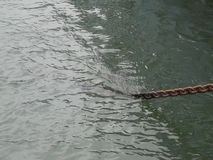 Steel chain anchor line disappears into water