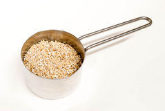 Steel Cut Oats. In a measuring cup Stock Photography