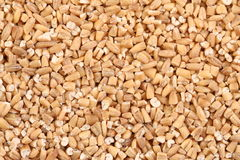 Steel Cut Oats. Macro of steel cut oats, which have been cut rather than rolled, are also known as Irish oats Royalty Free Stock Photo