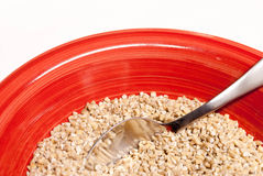 Steel Cut Oats in a Red Bowl Royalty Free Stock Photos