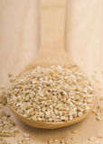 Steel cut oats on a wooden spoon Stock Image