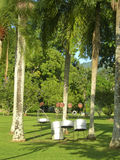 Steel drums Royal Botanical Gardens Trinidad Stock Photography