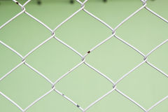 Steel Fence close-up with green background. Net, netting, cage fence steel background border boundary gate Royalty Free Stock Image