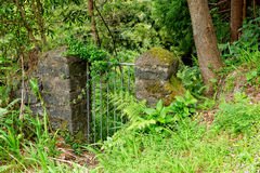 Steel gate in the forest Royalty Free Stock Photography