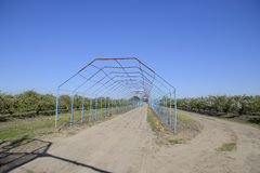 Steel gazebo for grapes over the road in the apple orchard. Fruit garden.  Royalty Free Stock Photos