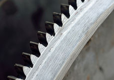 Steel gear Stock Image
