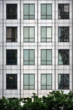 Steel and glass - modern window facade. Modern facade of a building, made of steel and glass, with rectangular windows and some trees in front Stock Image