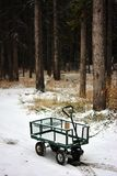 Steel Green Wagon in Snowy Forest Area Royalty Free Stock Photo