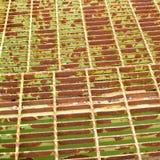 Steel grid. Floor of old steel bridge background pattern texture Royalty Free Stock Photography