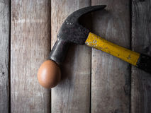 Steel hammer and egg Stock Photography