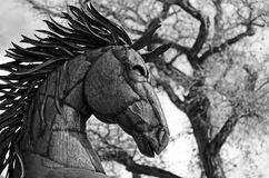 Steel Horse. Black and White of statuary  with dormant cottonwood in the back ground Stock Photos