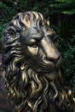 Steel lion sculpture of dusit zoo. Golden steel lion sculpture of dusit zoo, bangkok, thailand Royalty Free Stock Photos