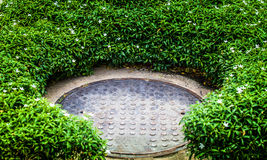 Steel manhole cover in green garden Royalty Free Stock Image