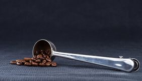 A steel measuring spoon with roasted coffee beans. On a background of rough dark blue fabric Stock Image