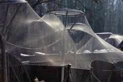 Steel mesh for aviary, zoo Jihlava Czech Republic Stock Images