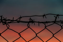 Steel mesh barbed wire fence sunset Royalty Free Stock Image