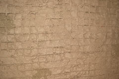 Steel mesh in cement Royalty Free Stock Photos