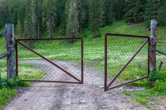 Steel mesh fence gate forest Royalty Free Stock Photography