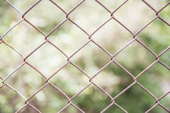 Steel mesh fence with corosion. Steel mesh focused on the wire mesh and blured on the background Stock Photos