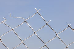 Steel mesh. Royalty Free Stock Photo