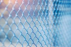 Steel mesh Rabitz. Painted blue Royalty Free Stock Photos