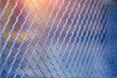 Steel mesh Rabitz Royalty Free Stock Images