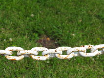 Steel metal chain links segment green background Stock Photography