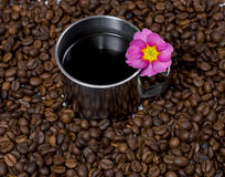 The steel mug and pink flower surrounded with coffee grains Stock Photo