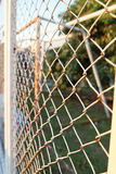 Steel net fence with blur background Royalty Free Stock Photo