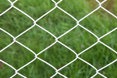 Steel net fence with blur background. Net, netting, cage fence steel background border boundary gate green grid guard iron line mesh metal metallic pattern Royalty Free Stock Images