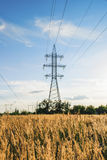 Steel power wire tower in country landscape at dusk Royalty Free Stock Photo