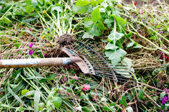 A steel rake on a grass. Stock Photography