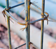 Steel rebar component in a construction site Stock Photography