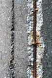 Steel rebars in concrete Stock Image