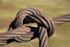 Steel rope, tied with a knot Royalty Free Stock Photo