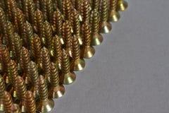 Steel screws Royalty Free Stock Image
